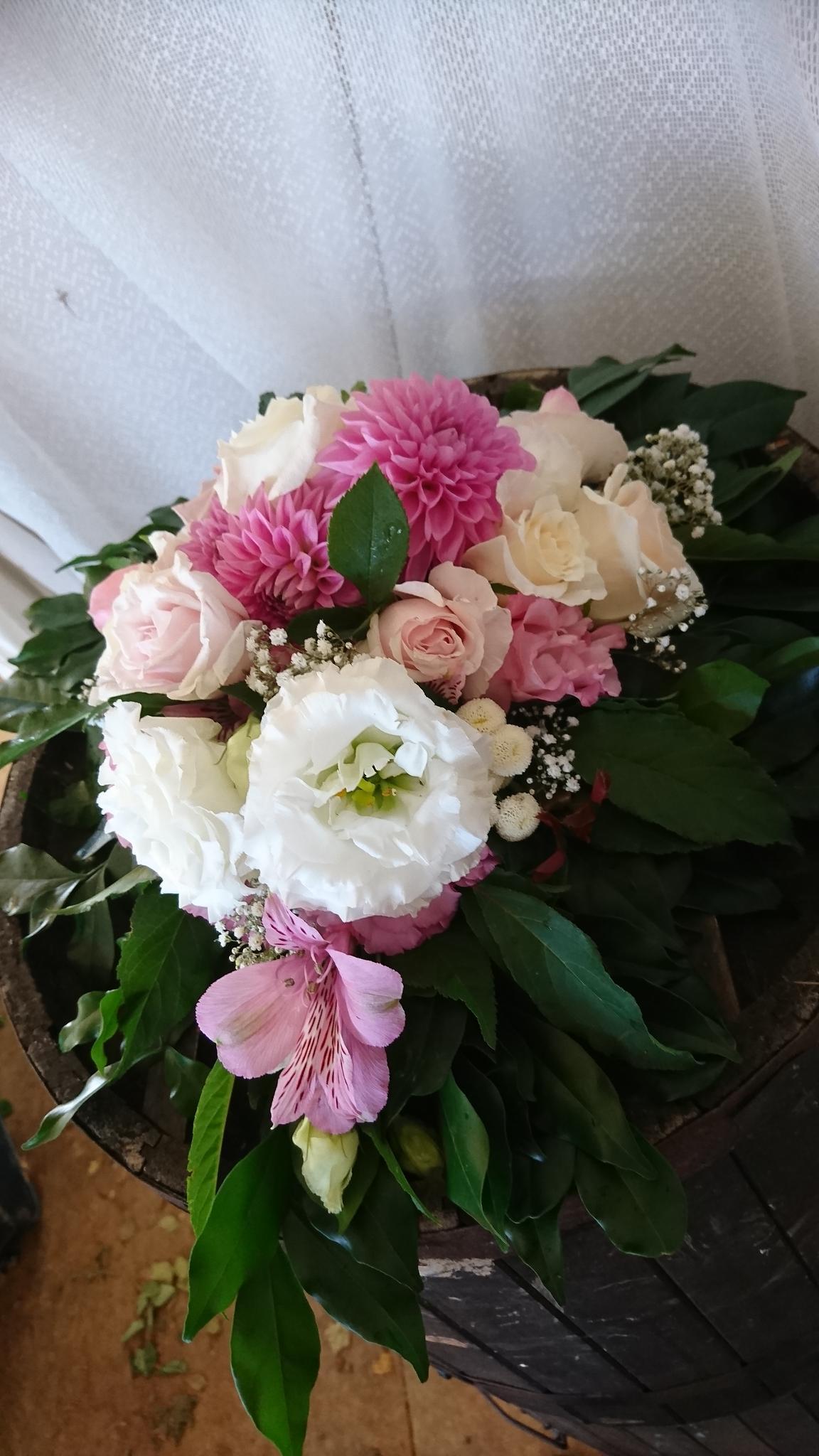 31 Dark Desire Eumundi Roses Dance Ballroom Latin Swing